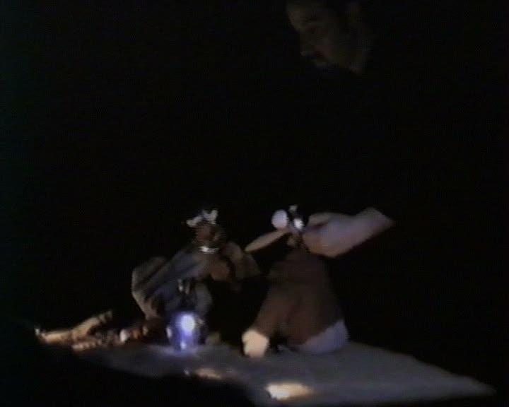 Petite feuille Vidéo : spectacle de marionnettes