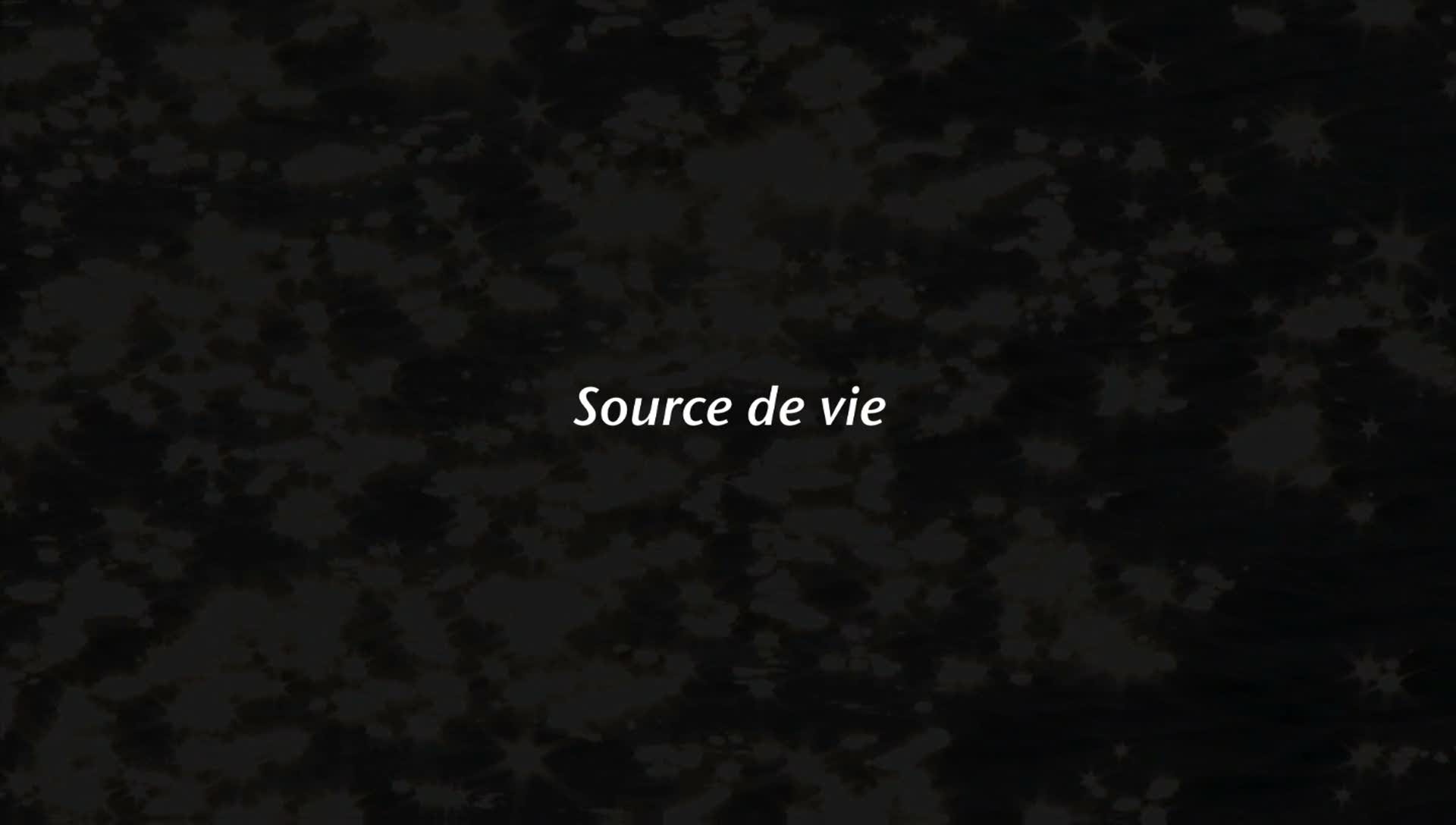 Source de vie