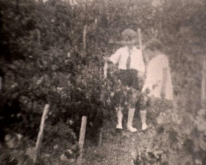 Vignes du Forest d'Entrais 2 (Les)