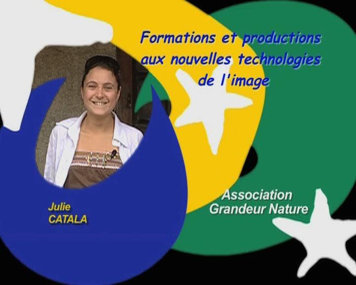 Formations et productions aux nouvelles technologies de l'image