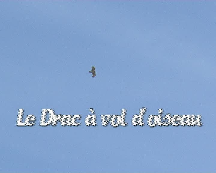 Drac à vol d'oiseau (Le)