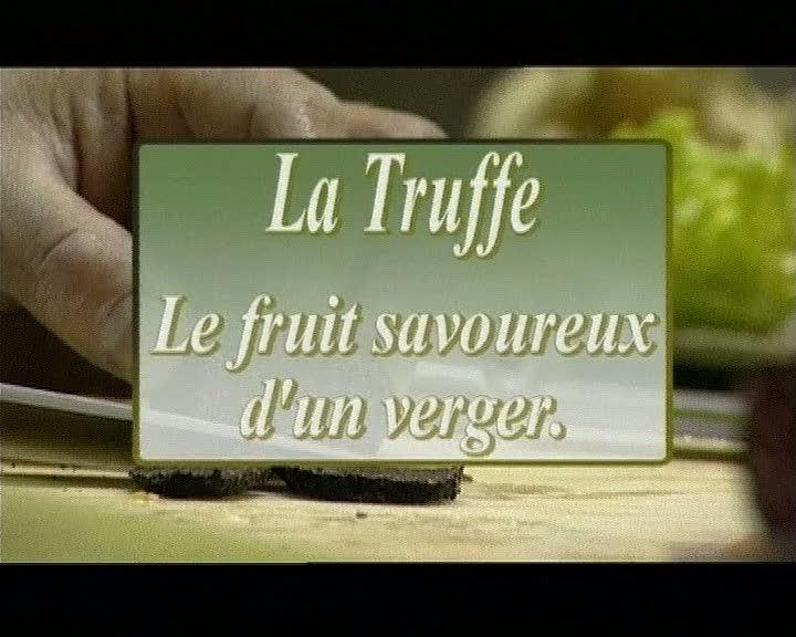 Truffe. Le fruit savoureux d'un verger. (La)