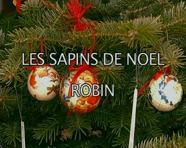 Sapins de Noël Robin (Les)