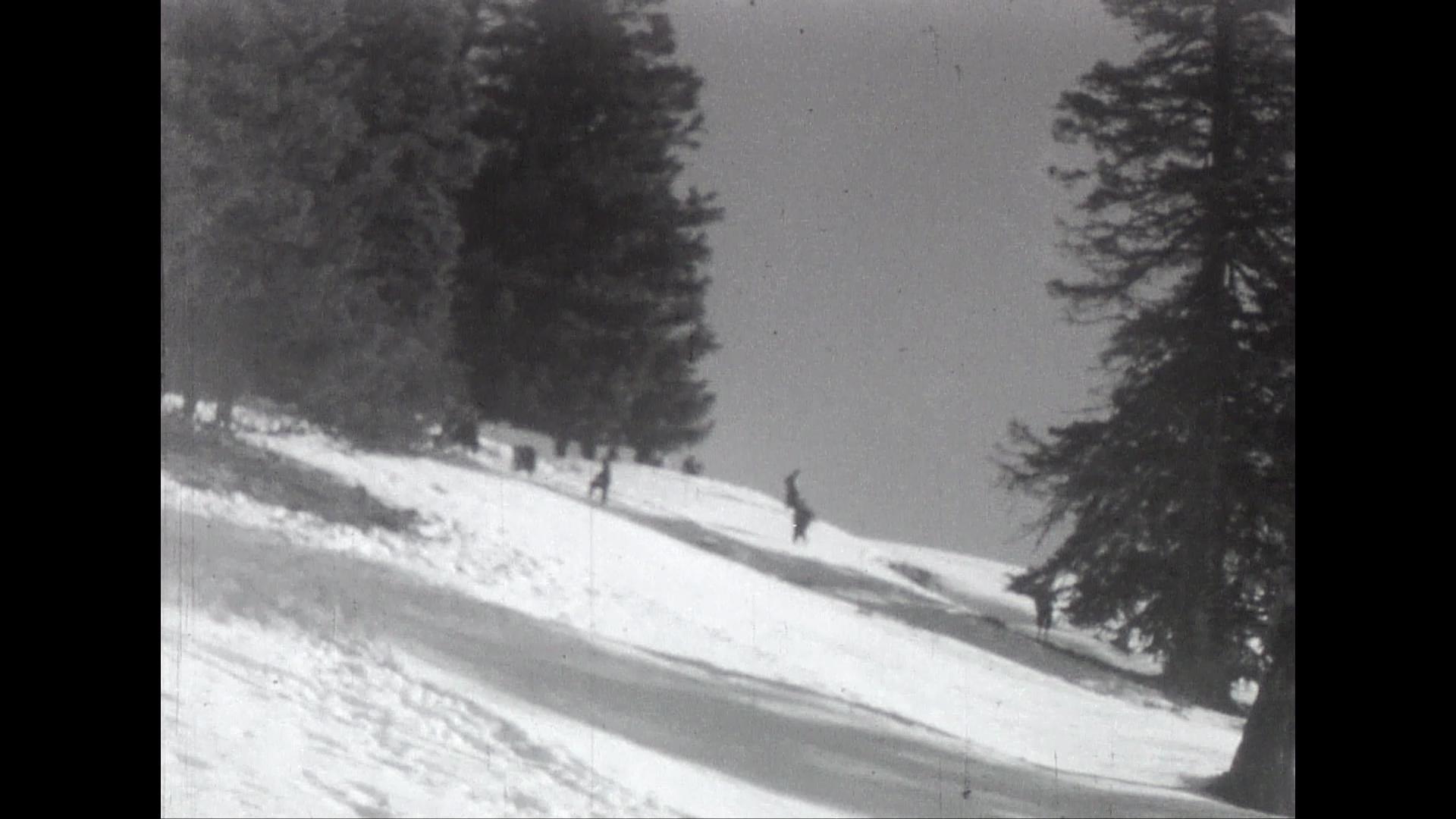Ski et modélisme