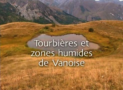 Tourbières et zones humides en Vanoise