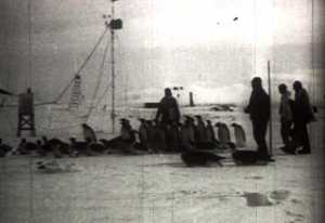 Expédition au Pôle Sud