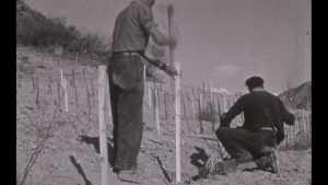 Fabrication des vins rouges à Remollon (La)