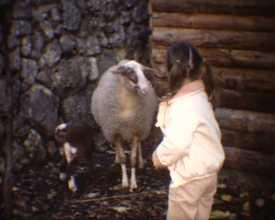 Loisirs familiaux, 1984-1985