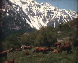 Vallées briançonnaises (Les) 2