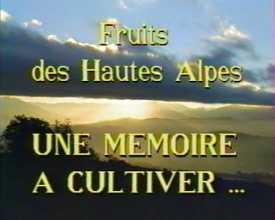 Fruits des Hautes-Alpes :  une mémoire à cultiver ...
