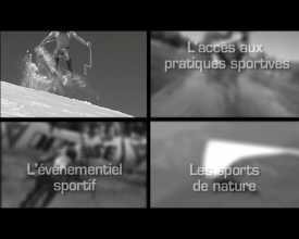 Schéma départemental du sport (Le)