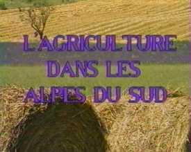 Agriculture dans les Alpes du Sud (L')