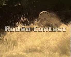Rabioux Rodéo Contest