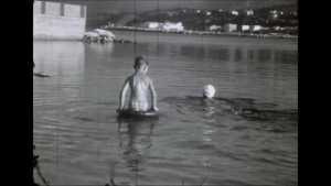 Bandol 1953