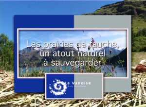 Prairies de fauche, un atout naturel à sauvegarder (Les)